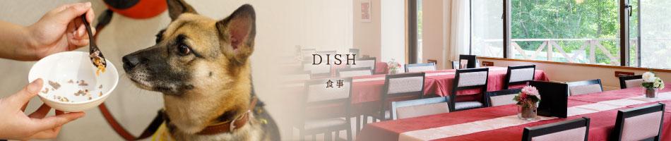 DISH 食事