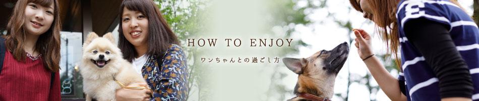 HOW TO ENJOY ワンちゃんとの過ごし方